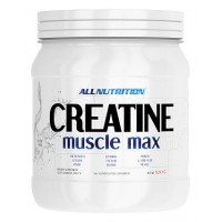 Creatine Muscle Max (250г)