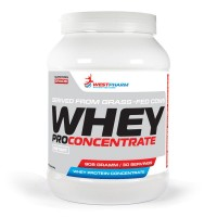 Whey Pro Concentrate (908г)