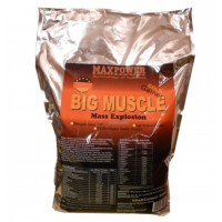 Big Muscle (5кг пакет)