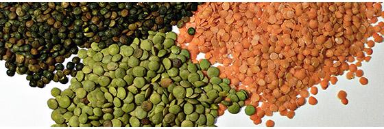 40-produktov-bogatyx-proteinom-12